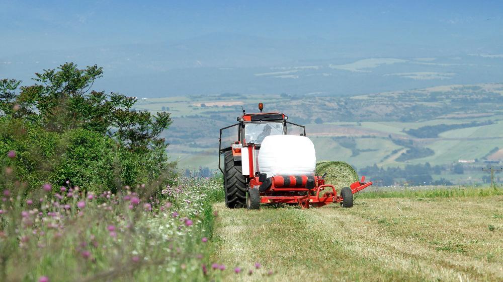 3500 στρέμματα, πολλά από τα οποία είναι βιολογικές καλλιέργειες