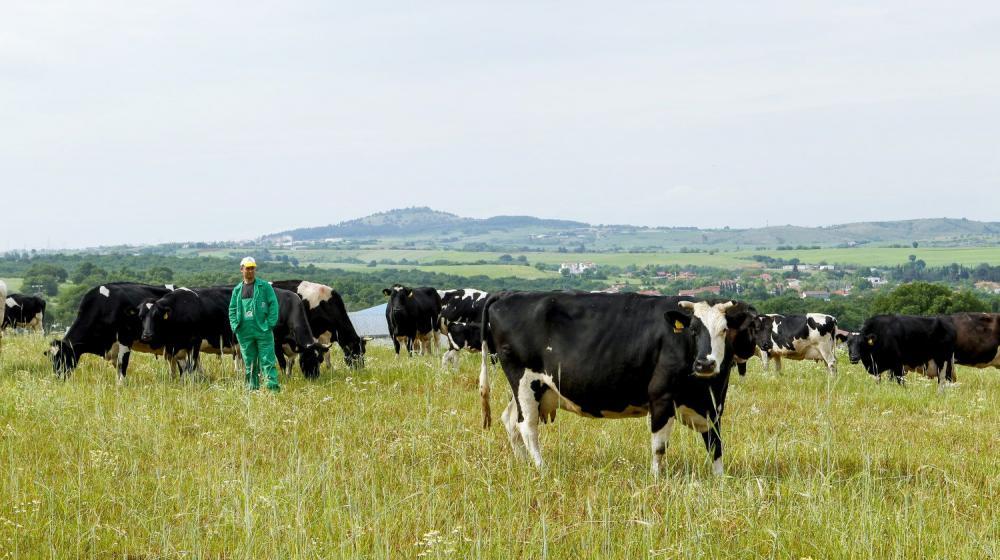 Φάρμα Κουκάκη - Ολόφρεσκο γάλα ημέρας